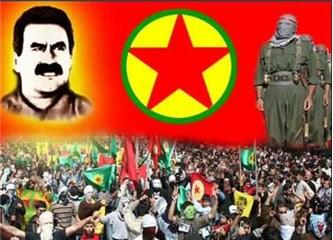 PKK Kürt kardeşlerimizin temsilcisi değildir!