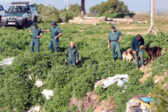 busqueda guardia civil