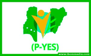 P-YES Recruitment Form 2019