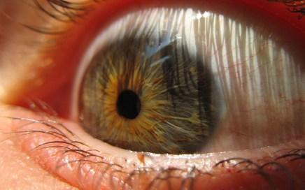 dilatar-pupila-droga-mentira-ibralc