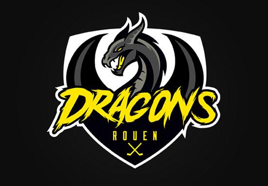 Les Dragons de Rouen by Aurelien Mahaut