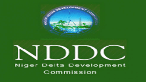 NDDC Funds Diversion: Ogoni monarch drums support for Nagbo