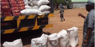 Nigeria Customs intercepts pangolin scales, others worth N952m