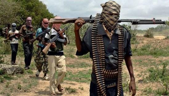Insurgency: Nigeria Army still in Control of Maiduguri - Damaturu road - Col Sagir
