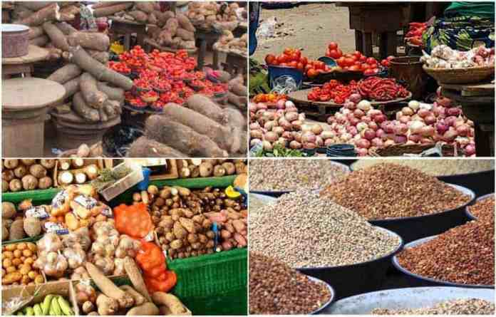 Nigeria's Food Production: Agric sector to receive over N600bn stimulus - Nanono