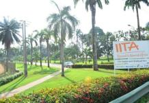 How digital tools'll upscale cassava weed management - IITA