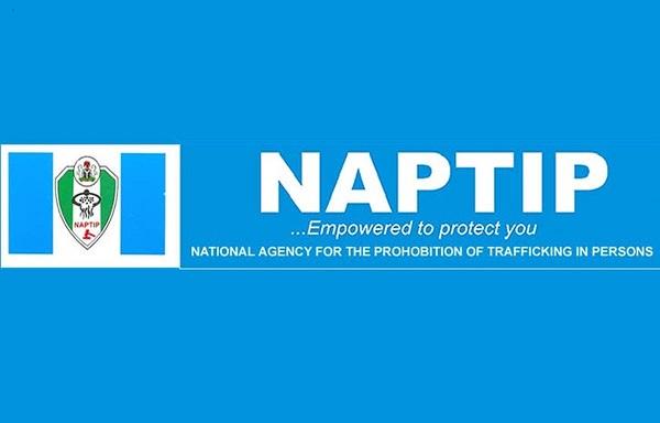 NAPTIP news