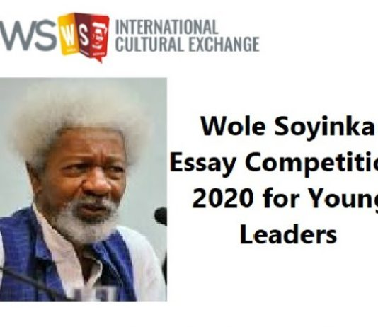 Soyinka essay contest