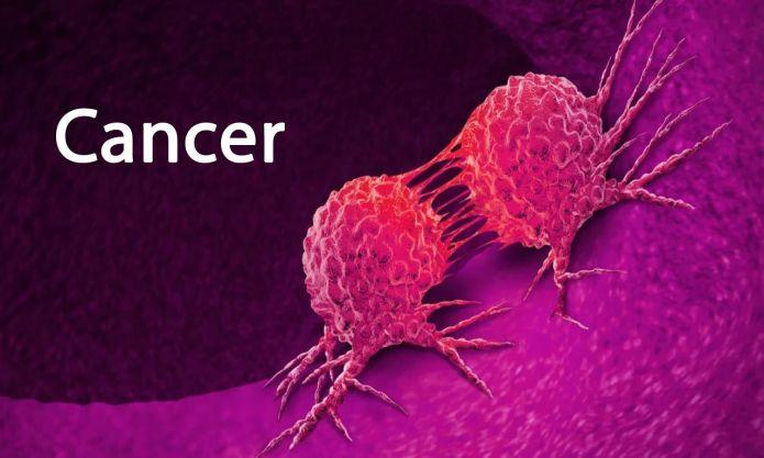 500,000 women globally die of cervical cancer yearly – Expert