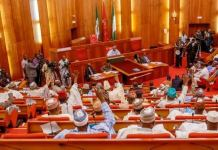 2021 budget: Senate urges agric ministry to focus on job creation for youth