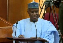 Defense Minister to Nigerians: Don't be cowards, defend yourselve