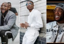 Burna Boy, Wizkid, Davido Others Also Make Forbes Africa Icons List