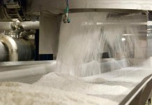 Backward Integration: Dangote commits $700m to sugar production in Nigeria