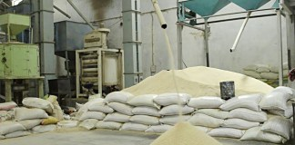 Food Security: RIFAN assures Nigerians of increased rice production