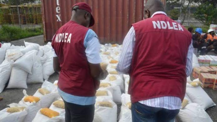 NDLEA Arrests Seven Drug Kingpins