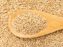 Sesame: Nigeria can become world leading exporter – Expert