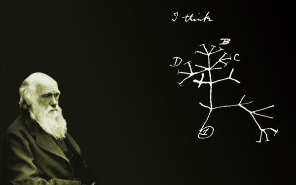 darwin_and_the_tree_of_life