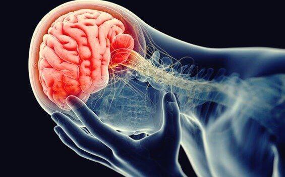 cervello-infiammato