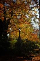 Herbstauswahl_10