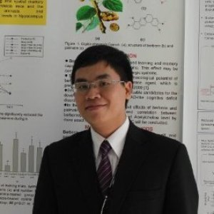Phan Phi Anh