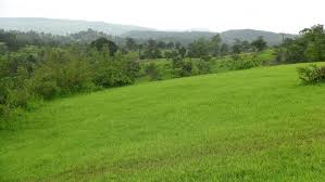 2116 SQUARE METRES LAND WITH RAFT FOUNDATION FOR SALE AT VICTORIA ISLAND