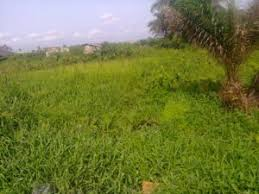 12.5 ACRES OF LAND FOR SALE IN LEKKI-EPE EXPRESS, LAGOS