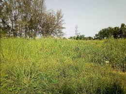 1,360.77 SQUARE METRES LAND FOR SALE AT VICTORIA ISLAND, LAGOS