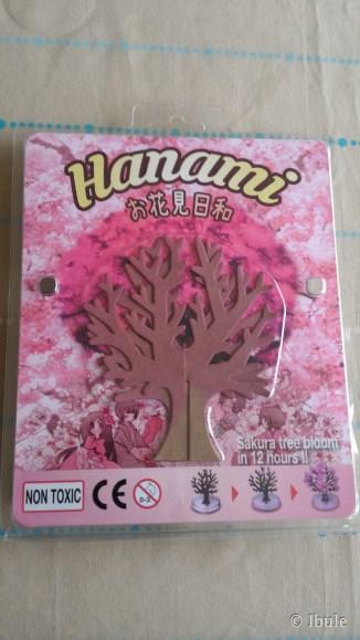 Hanami_arbre-magique_emballage