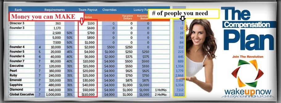 wun compensation plan