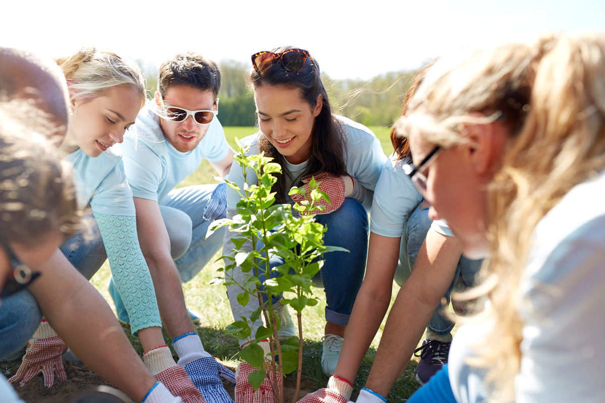 Mindful Adults, Mindful Kids: Planting Seeds in the Garden of Well-Being - IBZ Coaching
