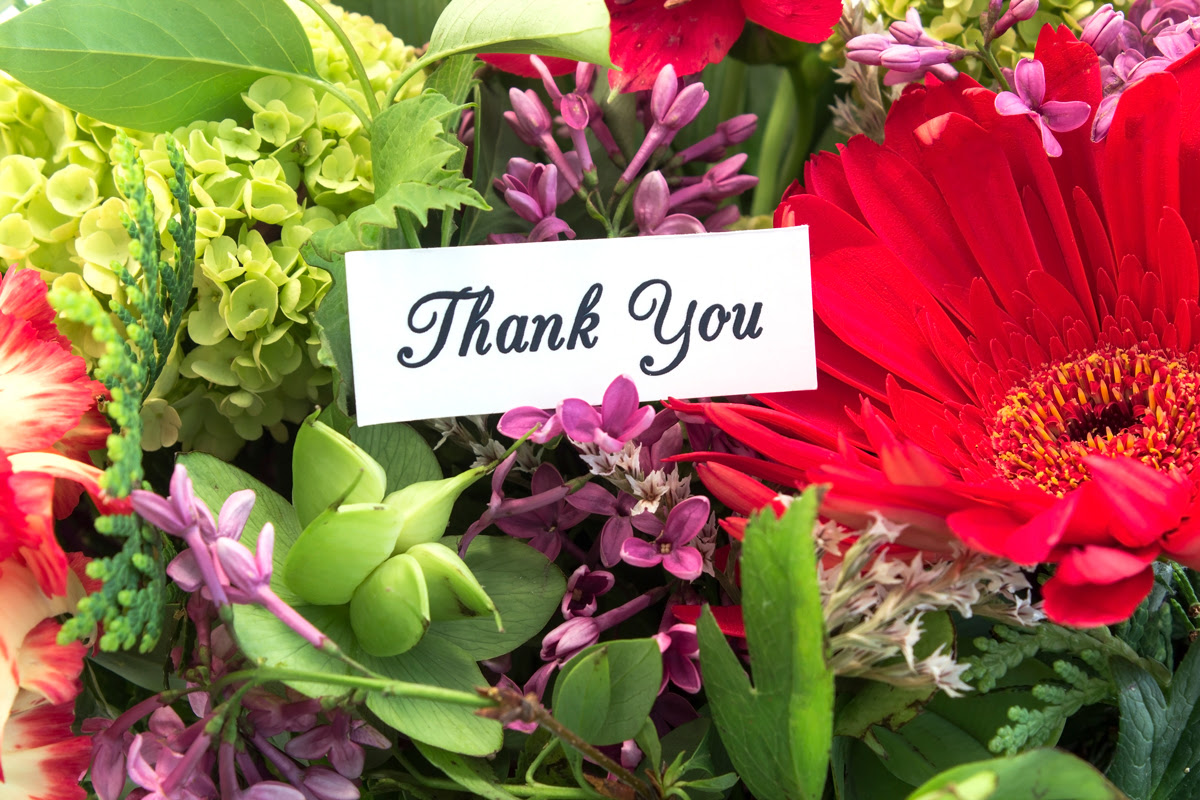 IBZ Life and Leadership Coaching - Blog Featured Image - With Gratitude To You