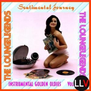 VA - Sentimental Journey Vol.8
