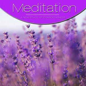 va-meditation-vol.-purple-2012