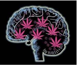 cannabis_mental_health