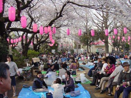 Как отдыхают и пьют японцы