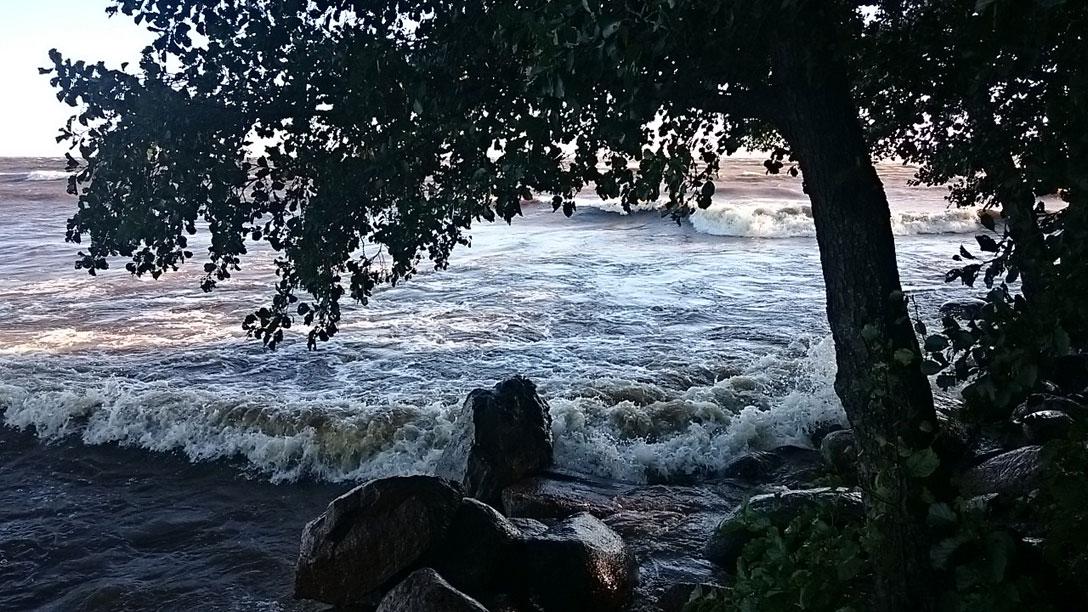 1396368 original Залив возомнил себя морем и разбушевался 15