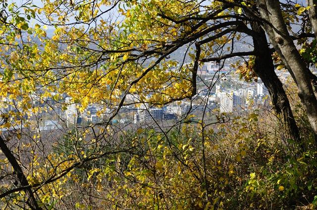Пятигорск, вид из осеннего леса