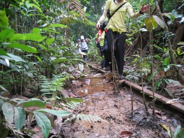 mud loveee