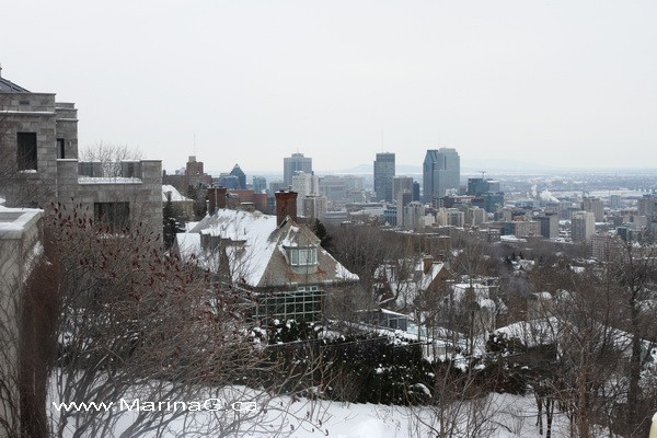 View of Montreal 4