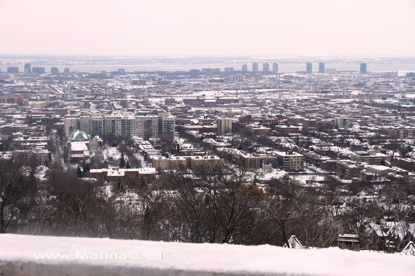 View of Montreal 5