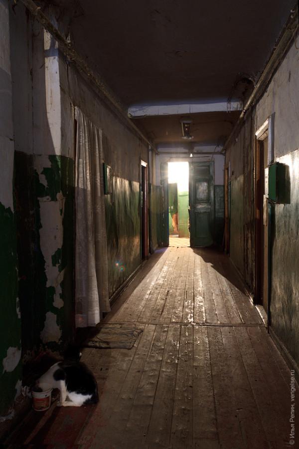 koridor koshka engels