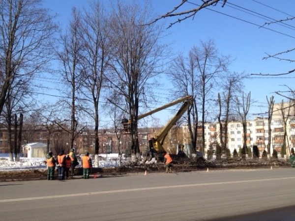 Trimming the Trees in Tula, Russia