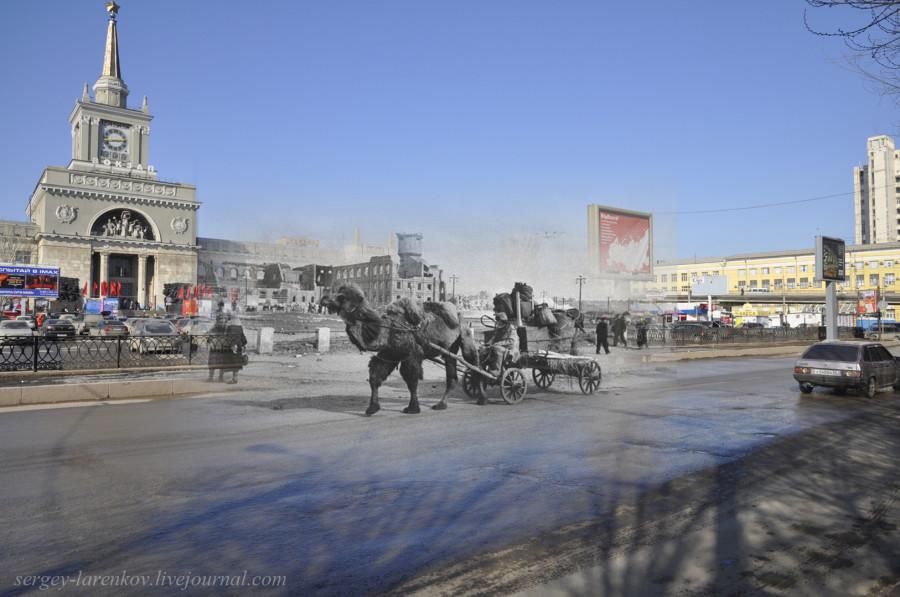 61.Сталинград 1943-Волгоград 2013. Гужевой транспорт