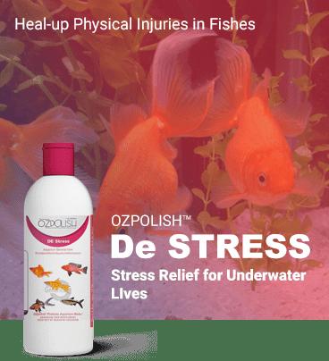 OZPOLISH De Stress