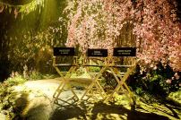 Cast Chairs for Disney's MALEFICENT: MISTRESS OF EVIL.