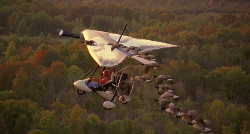 Anna Paquin stars in the inspirational true story FLY AWAY HOME (1996)