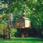 Casa en el arbol, tree house