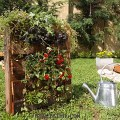jardin vertical palet