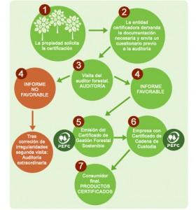 Proceso de obtención de certificado PEFC