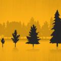 madera disminuye impacto ambiental de la construcción de efificios
